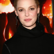 Katherine Heigl at the premiere of Dreamgirls. Wilshire Theatre, Los Angeles, CA. 12-11-06 — Lizenzfreies Foto