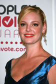 Katherine Heigl in the press room at The 33rd Annual Choice Awards. Shrine Auditorium, Los Angeles, CA. 01-09-07 — Stock Photo