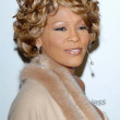 Whitney Houston — Stock Photo #16112349