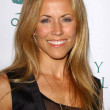 Stock Photo: Sheryl Crow
