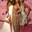 Постер, плакат: Alessandra Ambrosio with Izabel Goulart and Selita Ebanks arriving at The Victorias Secret Fashion Show Kodak Theatre Hollywood CA 11 16 06