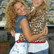 Постер, плакат: Adrienne Bailon and Belinda Peregrin at The Cheetah Girls 2 interview session The Mondrian Hotel West Hollywood CA 08 01 06