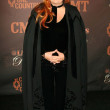 Wynonna Judd — Stock Photo #16383391