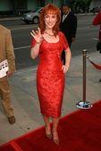"""Hollywoodland"" Premiere — Stock Photo"