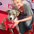 Постер, плакат: Katherine Heigl at the Old Navy Nationwide Search for a New Canine Mascot Franklin Canyon Park Beverly Hills CA 04 29 06