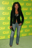 Keesha Sharp at The CW Launch Party. WB Main Lot, Burbank, CA. 09-18-06 — Stock Photo