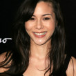China Chow - Stock Photo