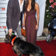 """Bow Wow Ciao"" to Benefit Much Love Animal Rescue - Foto de Stock"