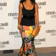 Stockfoto: Roberto Cavalli VodkLaunch Party