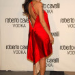 Roberto Cavalli Vodka Launch Party - 图库照片