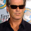 Pierce Brosnan - Foto de Stock