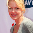 Katherine Heigl at the Old Navy Nationwide Search for a New Canine Mascot. Franklin Canyon Park, Beverly Hills, CA. 04-29-06 - Stock Photo