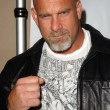 Stock Photo: Bill Goldberg