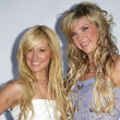 Постер, плакат: Ashley Tisdale Kristy Frank