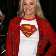 Katie Lohmann at the Screening of Superman II The Richard Donner Cut. Directors Guild of America, Beverly Hills, CA. 11-02-06 — Stock Photo