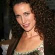 Andie MacDowell — Stock Photo #16464473