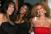 DeeDee Bigelow, Traci Bingham and Lesly Mess — Stock Photo