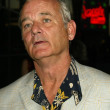 ������, ������: Bill Murray