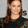sarah wayne callies — Stock Photo