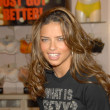 Постер, плакат: Adriana Lima at the launch of the What is Sexy list by Victorias Secret Victorias Secret Los Angeles Ca 04 25 06