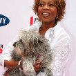 Stock Photo: Alfre Woodard at Old Navy Nationwide Search for New Canine Mascot. Franklin Canyon Park, Beverly Hills, CA. 04-29-06