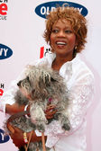 Alfre Woodard at the Old Navy Nationwide Search for a New Canine Mascot. Franklin Canyon Park, Beverly Hills, CA. 04-29-06 — Stock Photo
