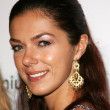 Постер, плакат: Adrianne Curry at the Opening of Paige boutique Paige Los Angeles CA 11 17 05