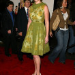 Katherine Heigl at premiere of Ringer. Directors Guild, Los Angeles, CA. 12-14-05 — 图库照片 #16524513