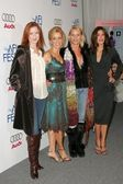 Marcia cross, felicity huffman, nicolette sheridan et teri hatcher — Photo