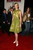 Katherine Heigl at the premiere of The Ringer. The Directors Guild, Los Angeles, CA. 12-14-05 — Stock Photo
