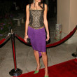 Alice Greczyn at NBC Winter TCPress Tour Party. Ritz-Carlton Huntington Hotel, Pasadena, CA. 01-22-06 — Stock Photo #16532429