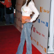 Kelly Monaco at the Rebel Yell Spring Launch Party to benefit the Elizabeth Glaser Pediatric AIDS Foundation. Kitson, Beverly Hills, CA. 02-19-06 — Stock Photo