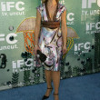 IFC&#039;s Independent Spirit Awards After Party - Stock fotografie