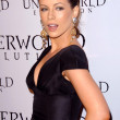 &quot;Underworld: Evolution&quot; World Premiere - Stock fotografie