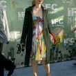 IFC's Independent Spirit Awards After Party — Zdjęcie stockowe