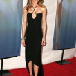Постер, плакат: 2006 Writers Guild Awards Arrivals