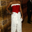 Aisha Tyler at the HBO Golden Globe Awards Party. Beverly Hilton Hotel, Beverly Hills, CA. 01-16-06 - Stock Photo