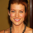 Kate Walsh arriving at the 58th Annual Directors Guild of America Awards. Hyatt Regency Century Plaza Hotel and Spa, Century City, CA 01-28-06 - Stock Photo