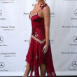 Mercedes-Benz Fall 2006 L.A. Fashion Week Day 3 Arrivals - Stock Photo