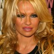 Pamela Anderson — Stock Photo #16577683