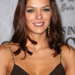 Adrianne Curry at the 10th Annual Multicultural Prism Awards Gala. Hilton Hotel, Universal City, CA 12-15-05 — Stock Photo