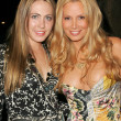 Abi Ferrin and Cindy Margolis  at Cindy Margolis Birthday Party, Guys Bar, Beverly Hills, CA 10-10-05 — Stock Photo
