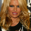 Pamela Anderson — Stock Photo #16579343