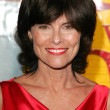 Adrienne Barbeau  at the Wizard of Oz, Ruby Red Slipper DVD Gala Screening, Samuel Goldwyn Theatre, Beverly Hills, CA 10-19-05 — Stock Photo