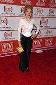 2006 TV Land Awards Arrivals — Stock Photo