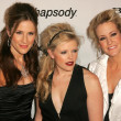 Dixie Chicks — Stock Photo