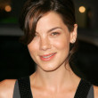 Michelle Monaghan — Stock Photo #16601787