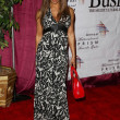 10th Annual Multicultural Prism Awards Gala — Stock Photo