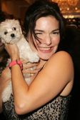 Laura Elena Harring — Foto de Stock