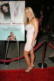 """World Premiere of """"Cruel World"""" — Stock Photo"""